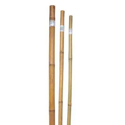 8 ft. x 1-1/2 in. Bamboo Super Pole