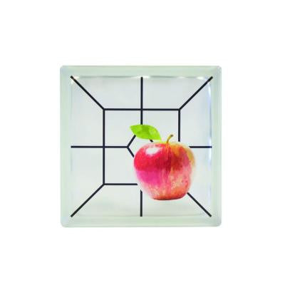 8 in. x 8 in. x 4 in. Apple Art Glass Blocks