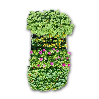 48 in. x 96 in. Raised Bed Garden Flower Kit with Calendulas, Nasturtiums, Sunflowers and Zinnias