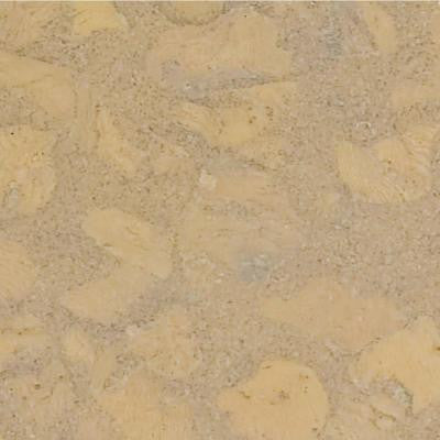 Lisbon Sand 1/2 in. Thick x 11-3/4 in. Wide x 35-1/2 in. Length Cork Flooring (23.17 sq. ft. /case)