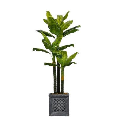 78 in. Tall Real Touch Evergreen in Planter