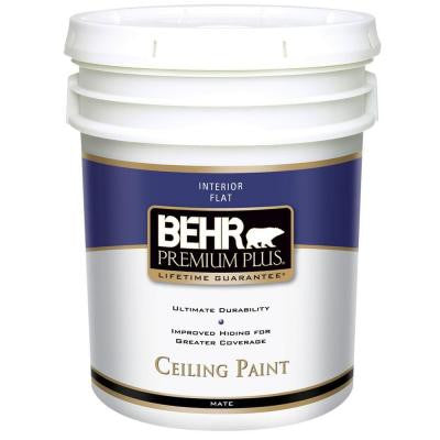 5-gal. Flat Interior Ceiling Paint