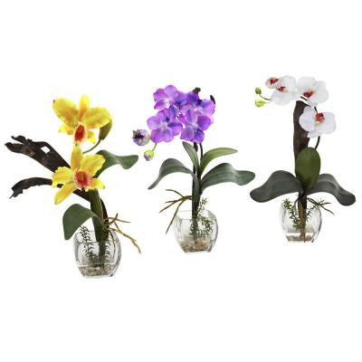 Mixed Orchid with Cube Arrangements in Yellow/Purple/White (Set of 3)