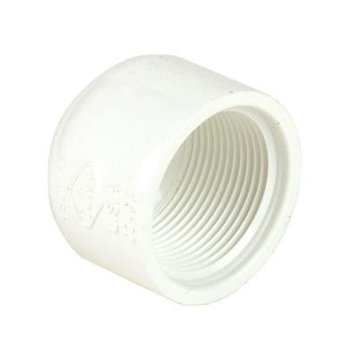 4 in. Schedule 40 PVC Cap FPT