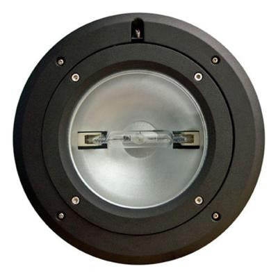 Brantley 1-Light Black Outdoor In-Ground Well Light