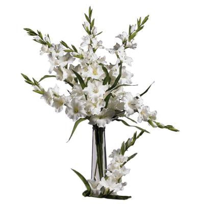 36 in. H White Gladiola Stem (Set of 12)
