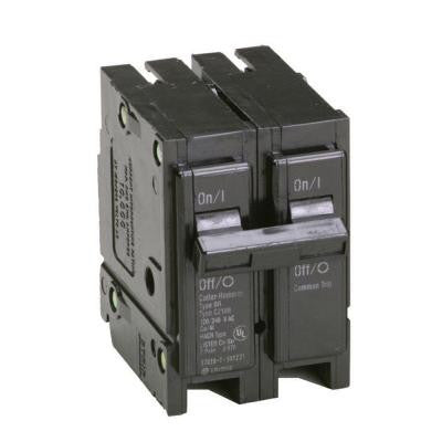 25 Amp Double-Pole Type BR Circuit Breaker
