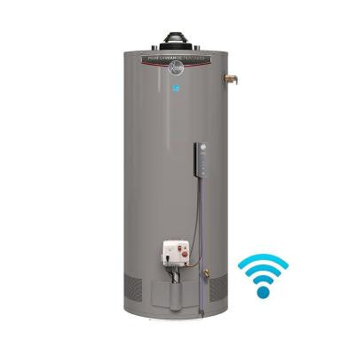 Performance Platinum 50 Gal. Short 12 Year 40,000 BTU Energy Star Natural Gas Water Heater