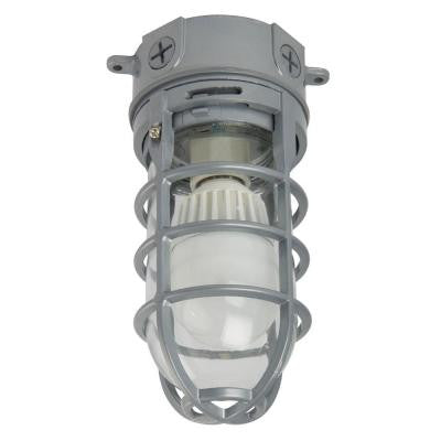 1-Light Grey Outdoor LED Ceiling/Hanging Vapor Tight