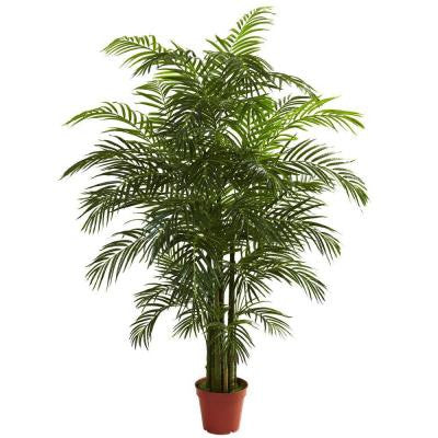 6.5 ft. UV Resistant Indoor/Outdoor Areca Palm