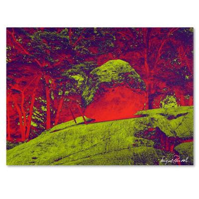 35 in. x 47 in. Enchanted Rock I Canvas Art