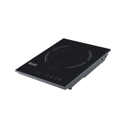 Portable 120 Volt Induction Cooker