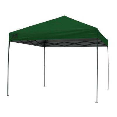 10 ft. x 10 ft. Green Instant Canopy