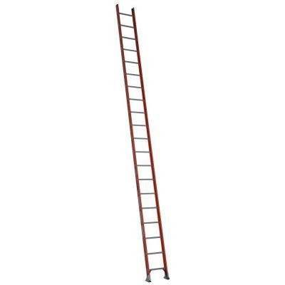 20 ft. Fiberglass D-Rung Straight Ladder with 300 lb. Load Capacity Type IA Duty Rating