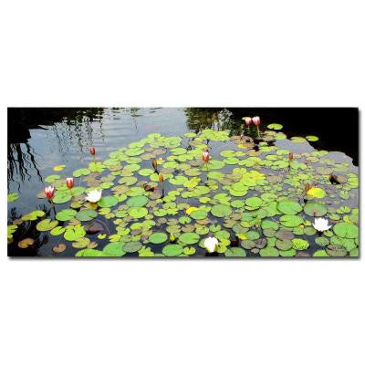 20 in. x 47 in. Summer Lily Pond Canvas Art