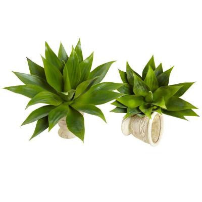 17 in. Agave Succulent Plant (Set of 2)