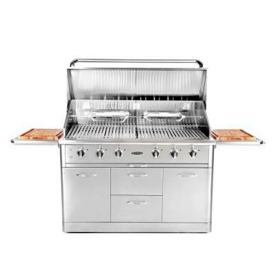 Precision 6-Burner Stainless Steel Natural Gas Grill