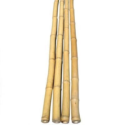 1 in. D x 6 ft. H Bamboo Poles Natural (25-Piece/Bundled)