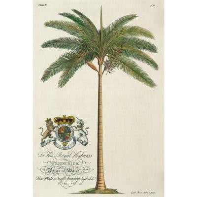 "24 in. x 36 in. ""King Palm"" by Porter Design Gallery Wrapped Canvas Wall Art"