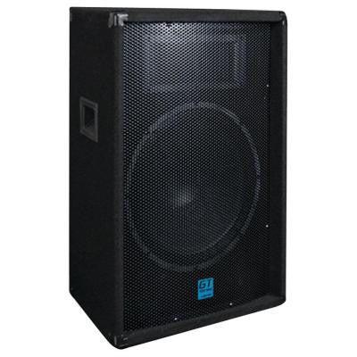 GT Passive Loudspeaker with 12 in. Woofer
