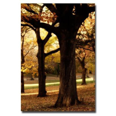 16 in. x 24 in. Park Canvas Art