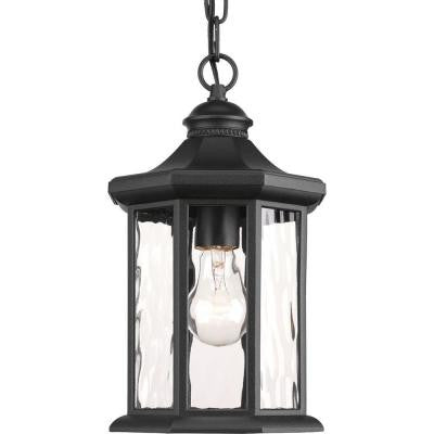 Edition Collection 1-Light Black Outdoor Hanging Lantern