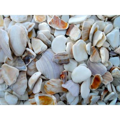 0.25 cu. ft. 1 in. to 2 in. Natural Landscaping Seashells