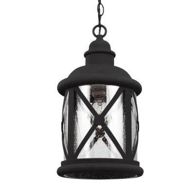 Lakeview 1-Light Black Outdoor Pendant