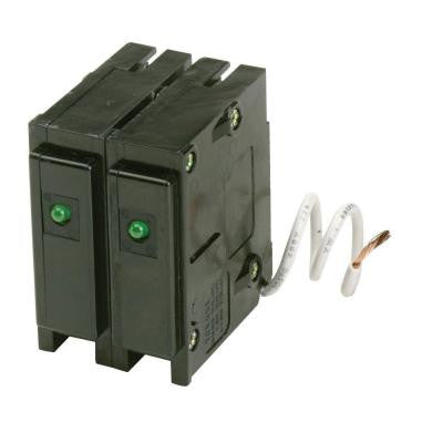 15 Amp Type BR Double-Pole Surge Arrester