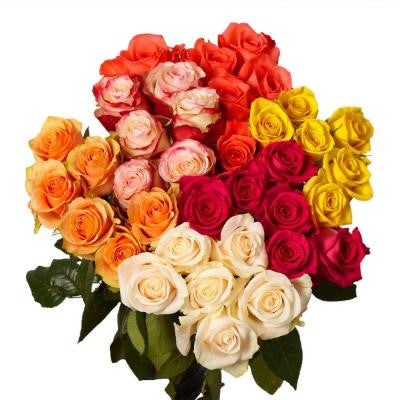 Assorted Color Roses (50 Stems) Includes Free Shipping