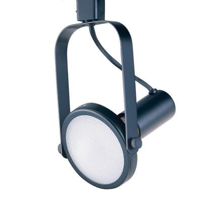Par 38 Black Gimball Ring Track Lighting Fixture
