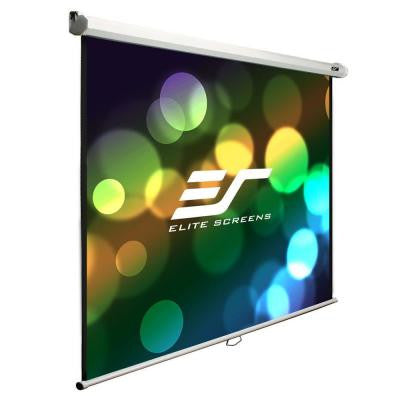 B Series 71 in. H x 71 in. W Manual Projection Screen with White Case