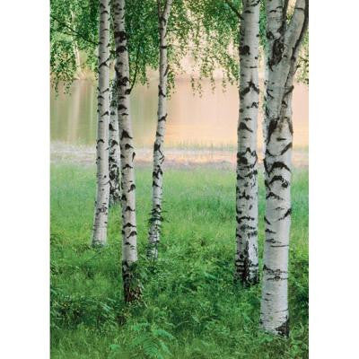 100 in. x 72 in. Nordic Forest Wall Mural