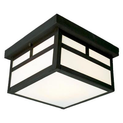 Negron 2-Light Outdoor Black Flush Mount