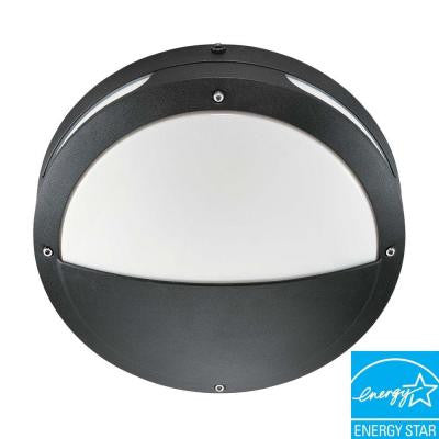 Wall/Ceiling 2-Light Outdoor Matte Black Round Hooded Fixture