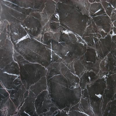 Laurent Brown 18 in. x 18 in. Polished Marble Floor and Wall Tile (11.25 sq. ft. / case)