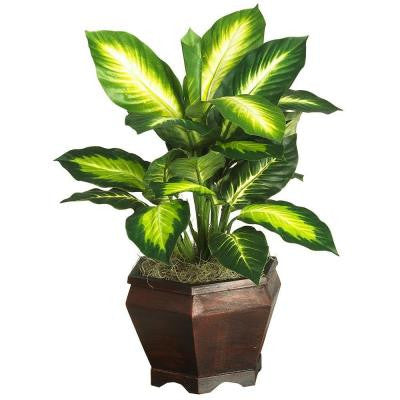 20 in. Golden Dieffenbachia Silk Plant with Wood Vase