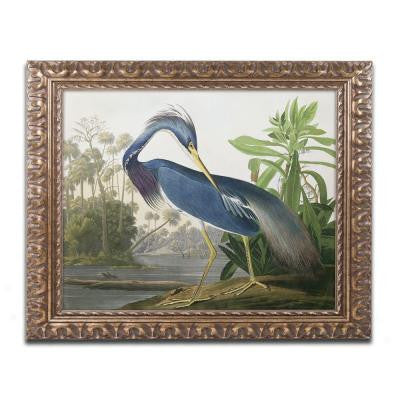 "16 in. x 20 in. ""Louisiana Heron"" by John James Audubon Framed Printed Canvas Wall Art"