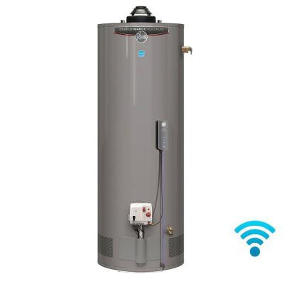 Performance Platinum 38 Gal. Tall 12 Year 36,000 BTU Energy Star Liquid Propane Water Heater