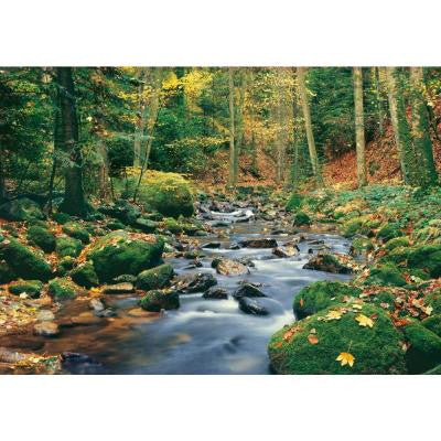 100 in. x 144 in. Forest Stream Wall Mural