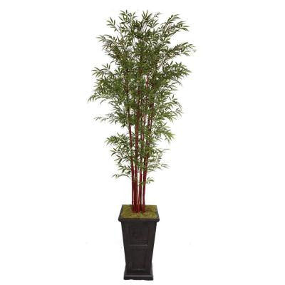 111 in. Tall Harvest Bamboo Tree in 16 in. Fiberstone Planter