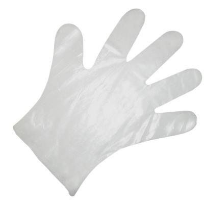 Disposable HDPE Food Service Gloves (1000-Count)