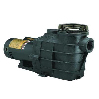 Super II 2 HP Full-Rated Pool Pump