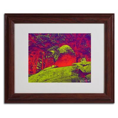 11 in. x 14 in. Enchanted Rock I Matted Framed Art
