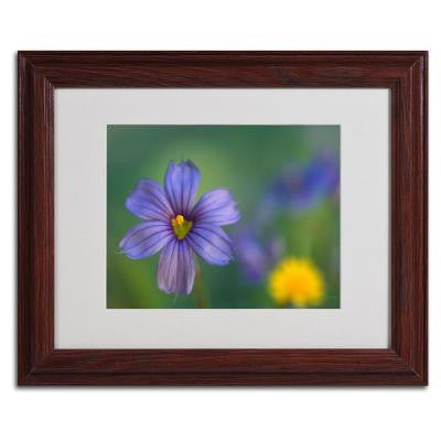 11 in. x 14 in. Blue Eyed Grass Matted Framed Art