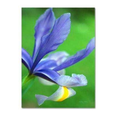 22 in. x 32 in. Spring Iris Canvas Art