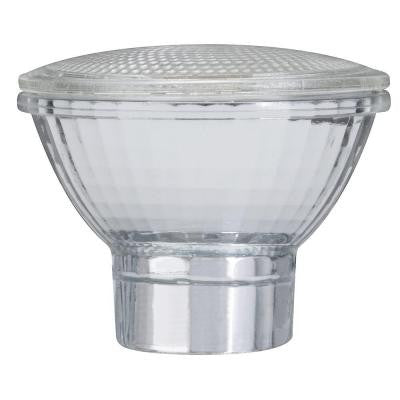 Glass PAR 20 Lamp Cover