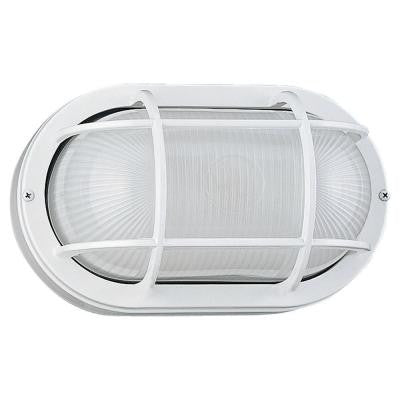 Riverside 1-Light White Outdoor Wall/Ceiling Fixture