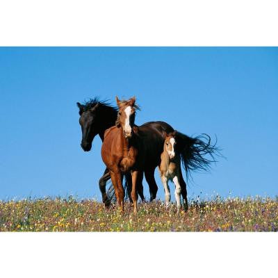 48 in. x 72 in. Horse Family Wall Mural