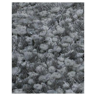 Elite Shag Silver 2 ft. 3 in. x 3 ft. 9 in. Area Rug